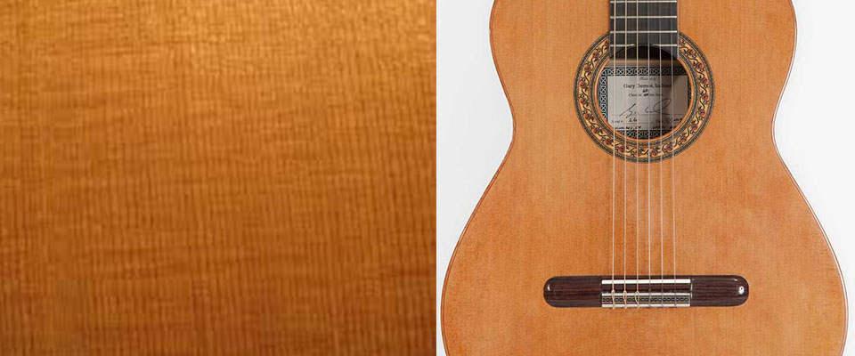 گیتار چوب سدر